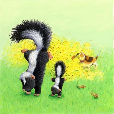 corke-skunk-baby-puppy-jpg