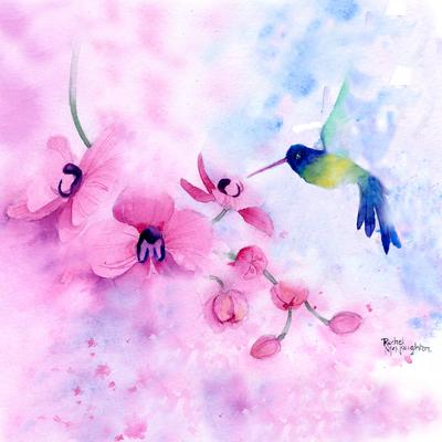 rachelmcnaughton-hummingbird-and-orchid-jpg