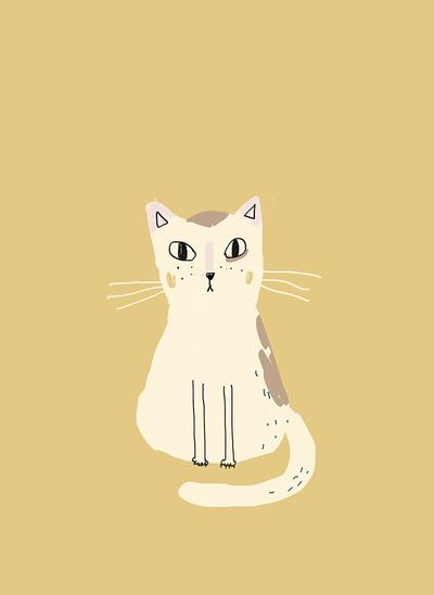 sophiatouliatou-mono-cat-jpg
