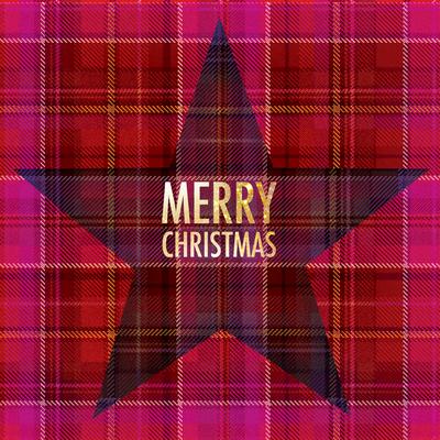 lsk-christmas-tartan-plaid-star-jpg