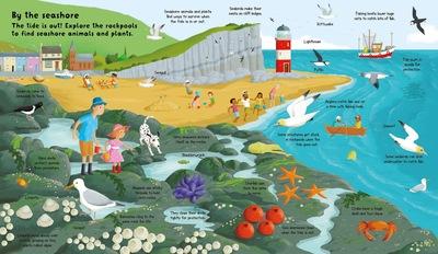 oceans-sea-life-beach-rock-pool-jpeg