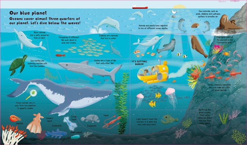 OCEANS_sea-liife_fish_blue-planet.jpeg