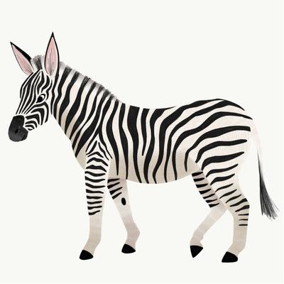 zebra-jpg-7