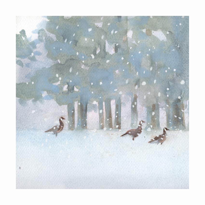 RAS_Geese Forest Snow 2 200dp.jpg