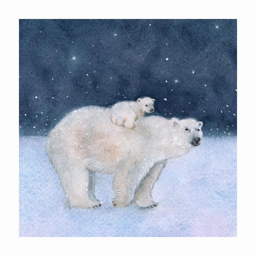 RAS_Polar Bear and Cub Snow 200dp.jpg