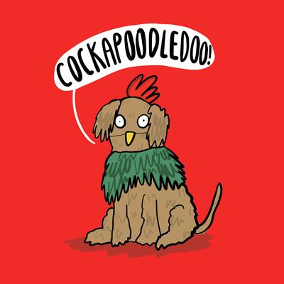 cockapoodledoo-jpg