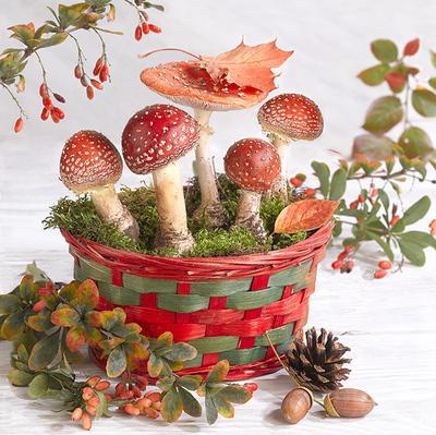 floral-still-life-greeting-card-amanita-lmn64215-jpg