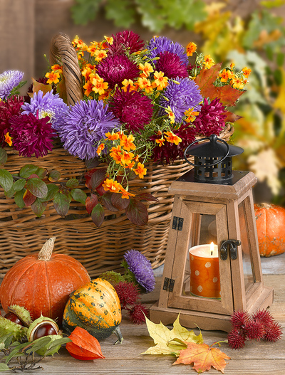 floral-still-life-greeting-card-autumn-lmn64139-jpg