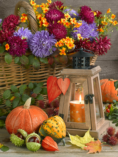 floral-still-life-greeting-card-autumn-lmn64161-jpg