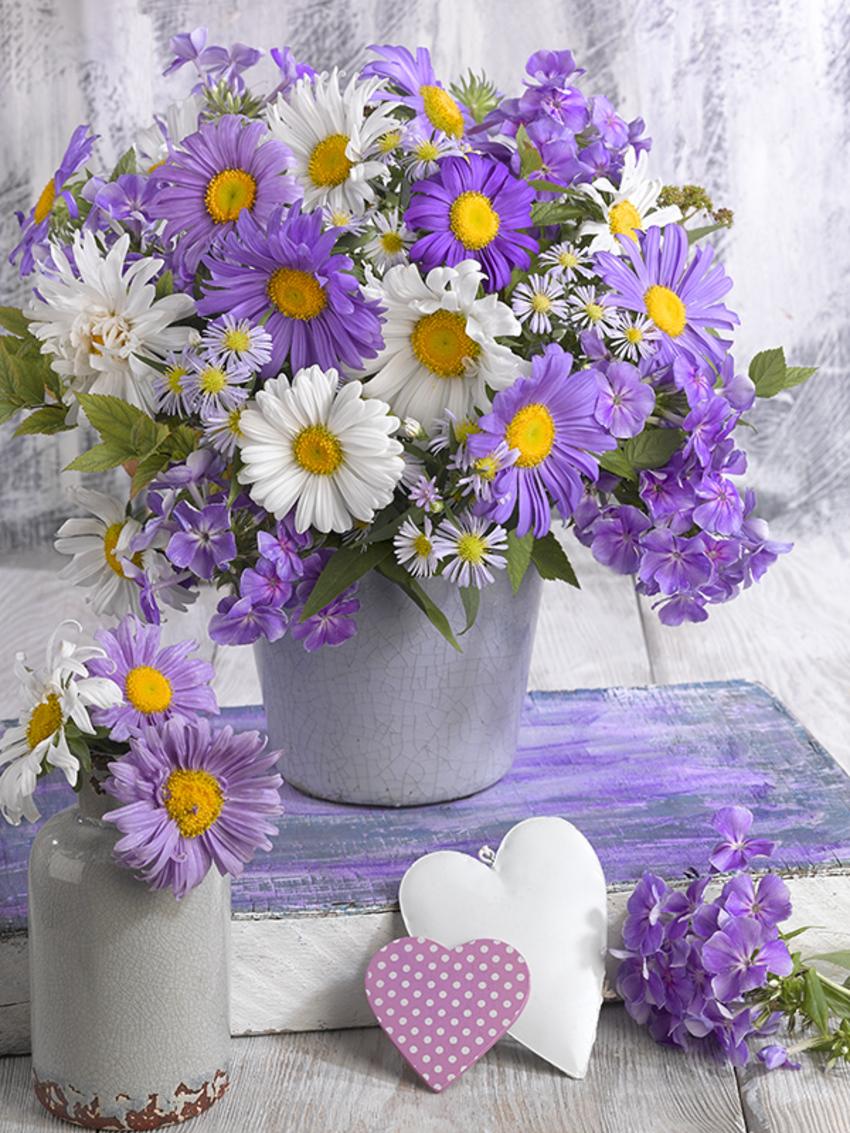 floral_still life_greeting card_LMN63984.jpg