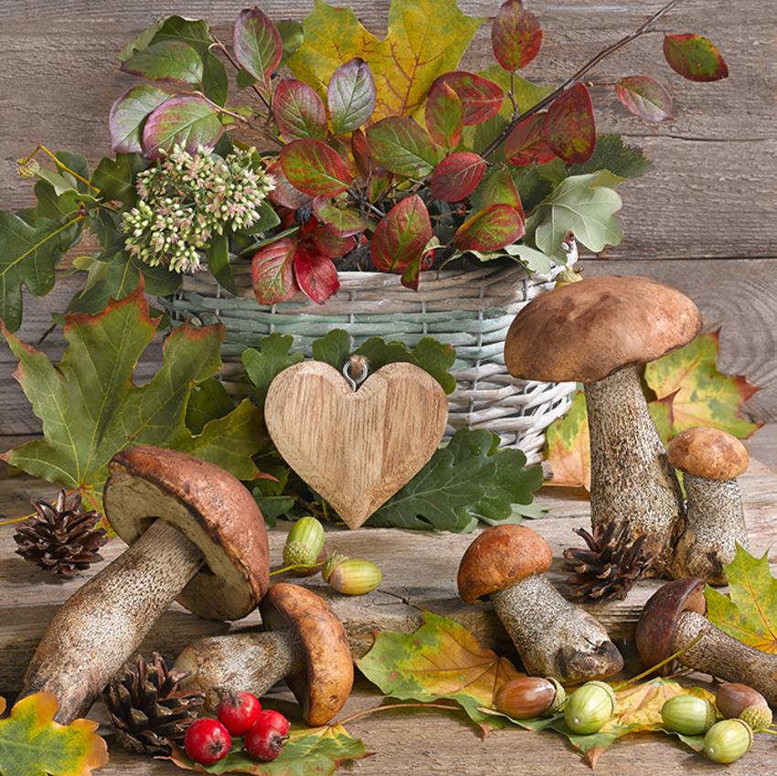 floral_still life_greeting card_mushrooms_LMN63811.jpg