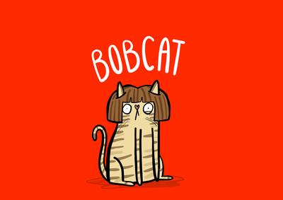 bobcat-jpg
