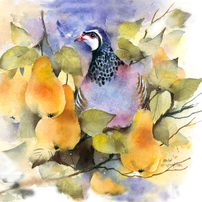 partridge-in-a-pear-tree-jpg-4