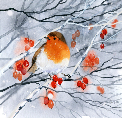 robin-snow-and-berries-jpg
