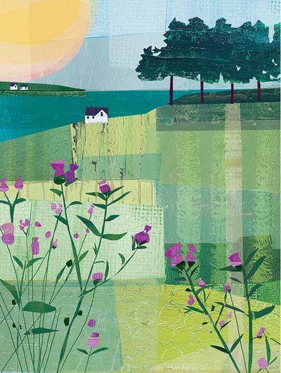 meadows-jpg