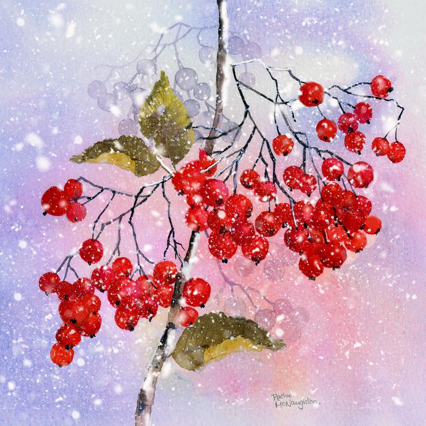 Berries and snow.jpg
