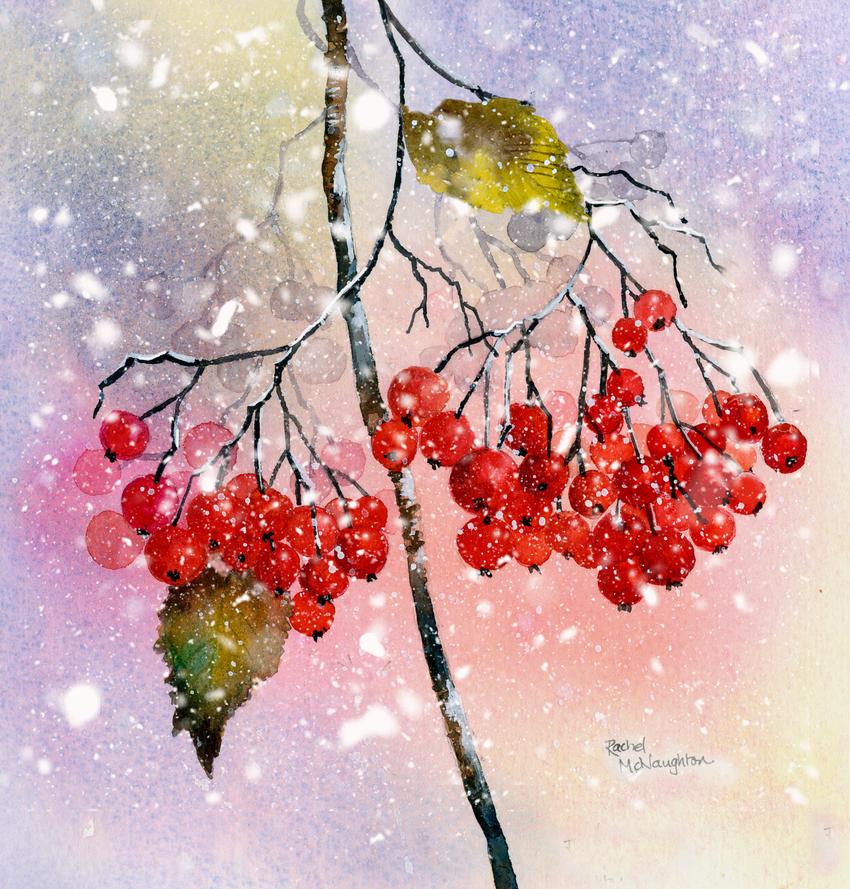Berries and snow2.jpg