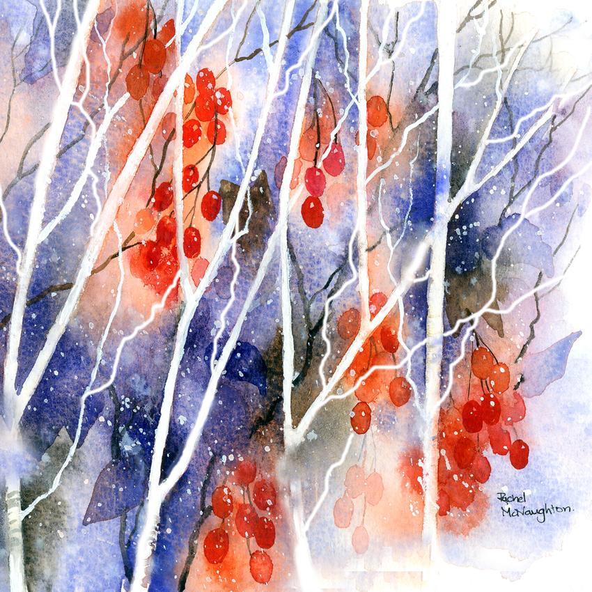 White twigs red berries.jpg