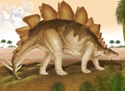 stegosaurus-jpg