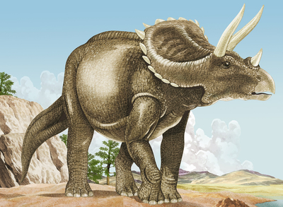 triceratops-jpg