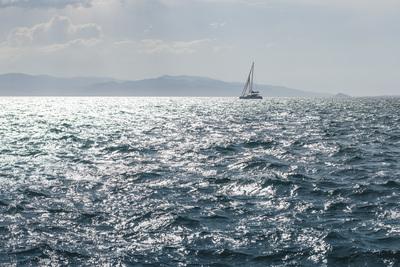 mpj-sea-sailing-2-jpg