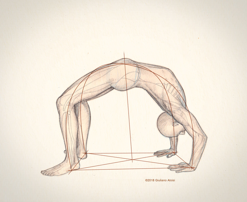 urdhva_dhanurasana_yoga_giuliano_aloisi.jpg