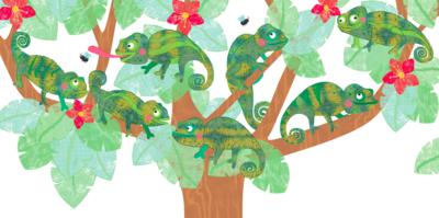lizalewisdkflipflap1chameleons-png