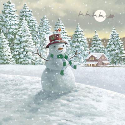 snowman-front-jpeg