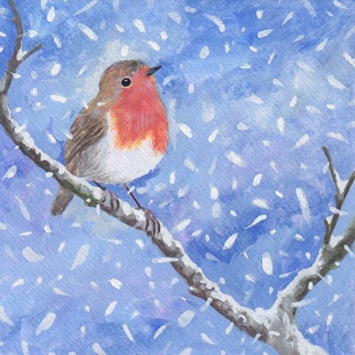 robin-perching-jpeg