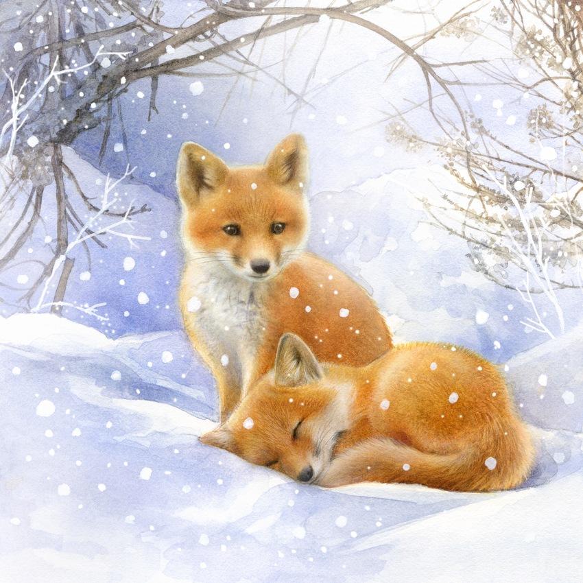 Лиса в зимнем лесу картинки для детей