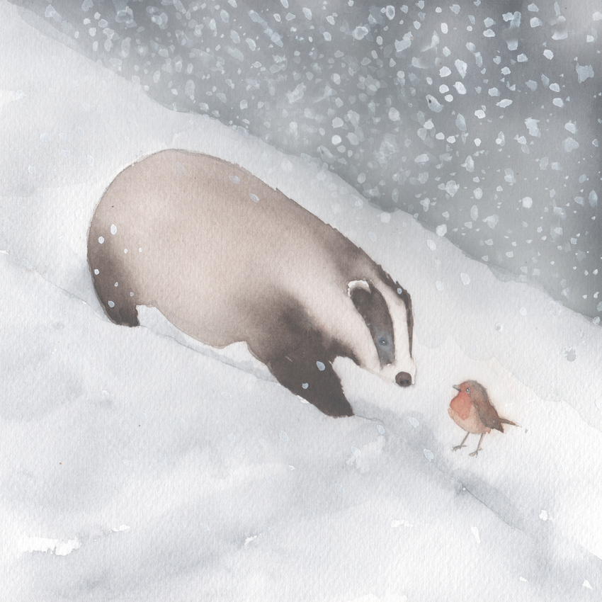 badger and robin snow cristmas UK animals.jpg