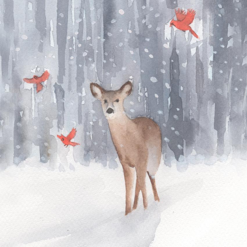 deer cardinals snow christmas american animalsl.jpg