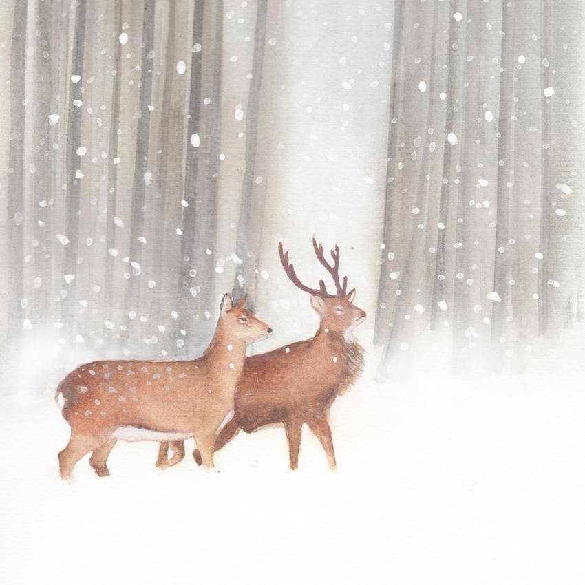forest snow christmas white tailed deer.jpg