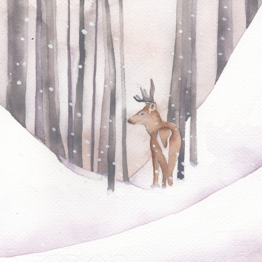 forest snow christmas white tailed stag.jpg