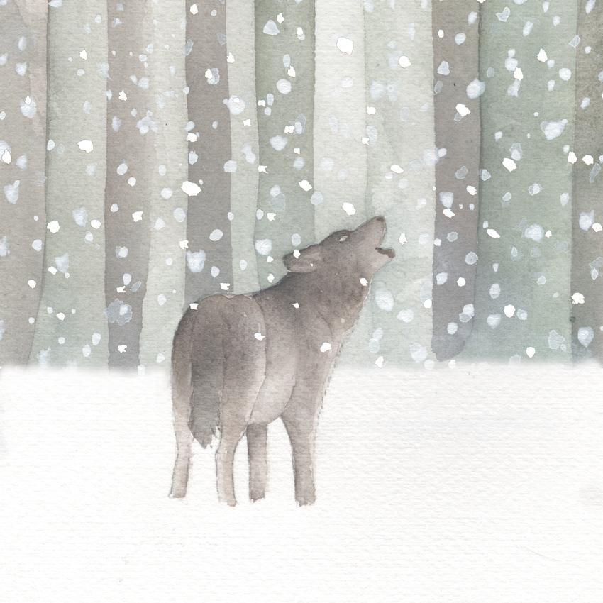 forest snow christmas wolf.jpg
