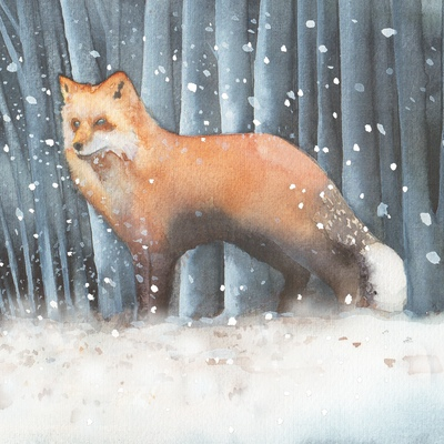 fox-snow-cristmas-uk-animals-jpg