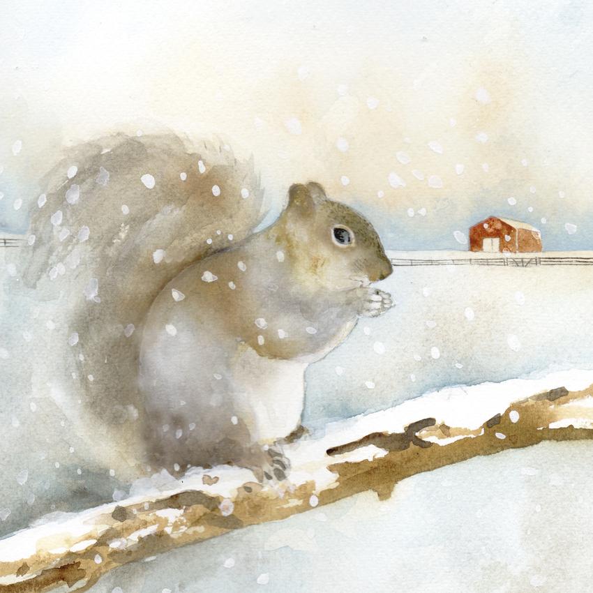 red barn snow christmas grey squirrel.jpg