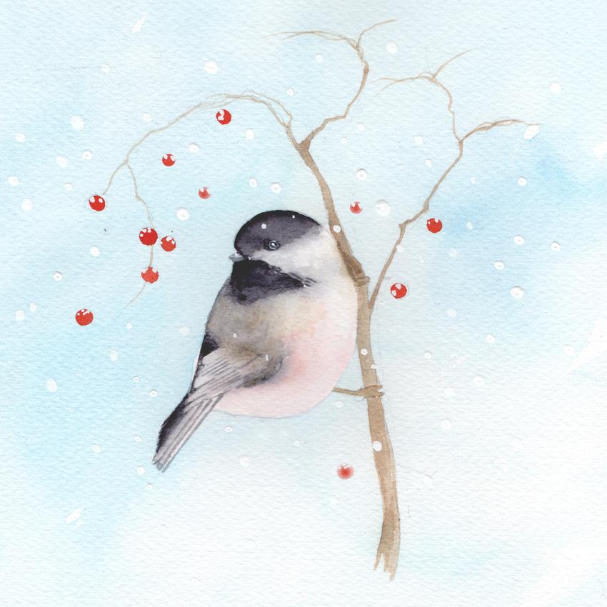 red berries snow christmas chickadee .jpg