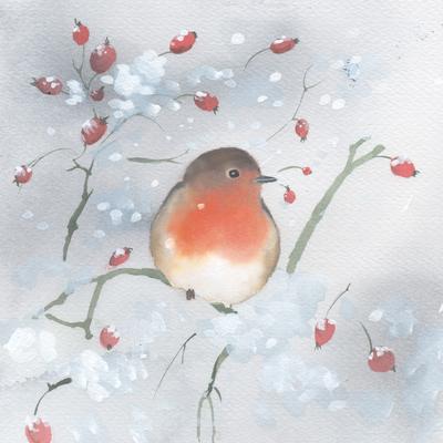 robin-rose-hips-snow-cristmas-uk-animals-jpg
