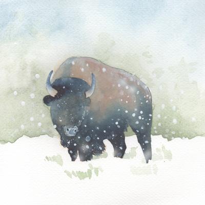 snow-christmas-bison-jpg