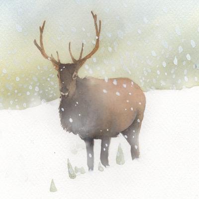 snow-christmas-elk-jpg