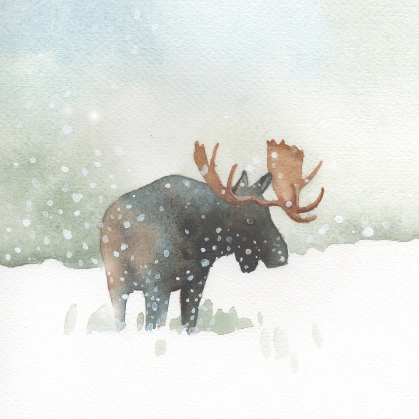 snow christmas moose.jpg