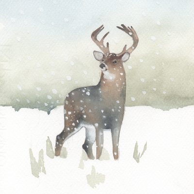 snow-christmas-white-tailed-stag-jpg