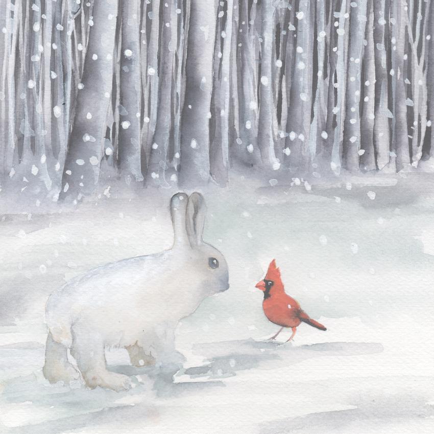 snowshoe hare and cardinal snow christmas american animalsl.jpg