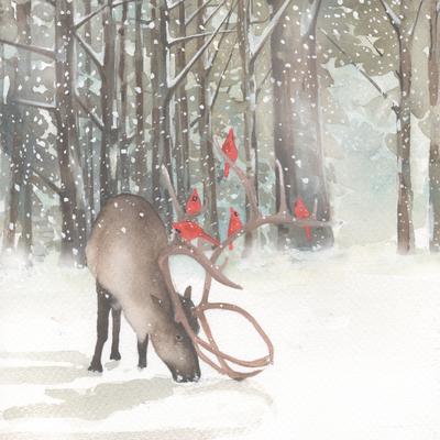 stag-cardinals-snow-christmas-american-animalsl-jpg