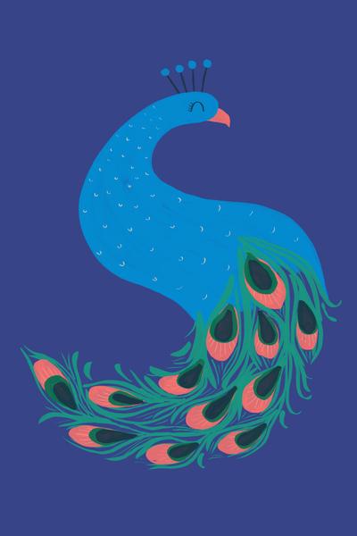 ap-peacock-zosite-oriental-feminine-bird-nature-pretty-jpg