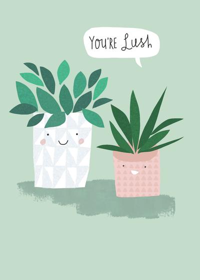 succulents-jpg-1