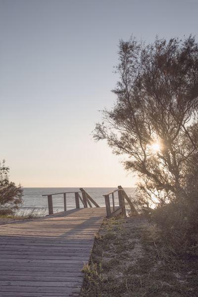 beach-11-15-011-jpg