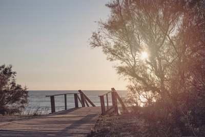 beach-11-15-012-jpg