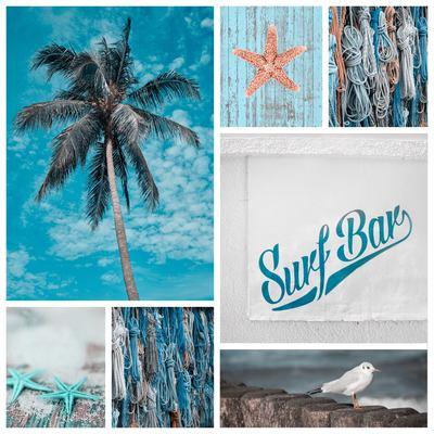 collage-1-jpg